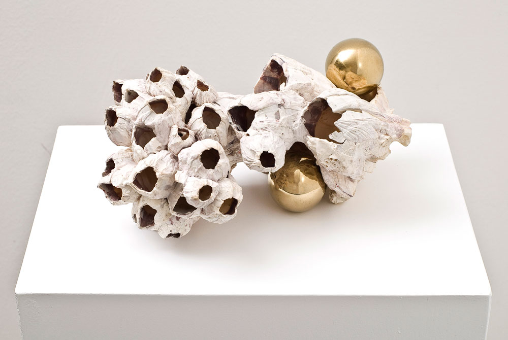 Alessandro Piangiamore | Untitled, 2011, barnacle, brass, cm 33 x 23 x 15