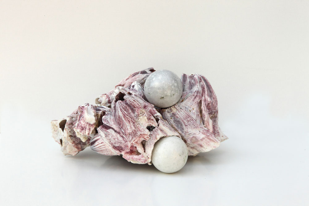 Alessandro Piangiamore | Untitled, 2013, barnacle, marble, cm 30 x 20 x 15