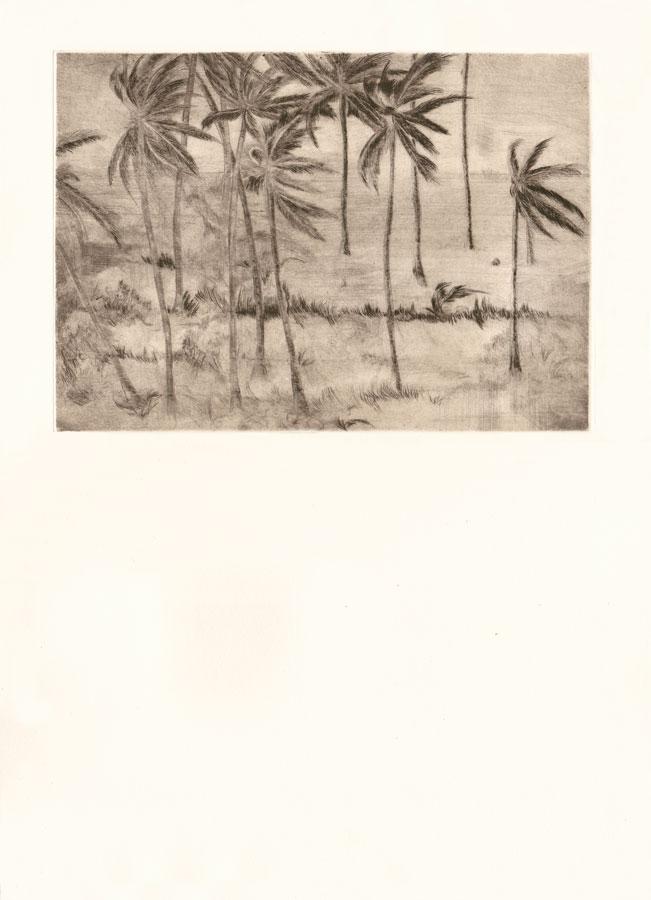 Alessandro Piangiamore | Tutto il vento che c'è (Elephanta) 2010-2014, etching, cm 31×40 . Edition of 3 + 2 AP