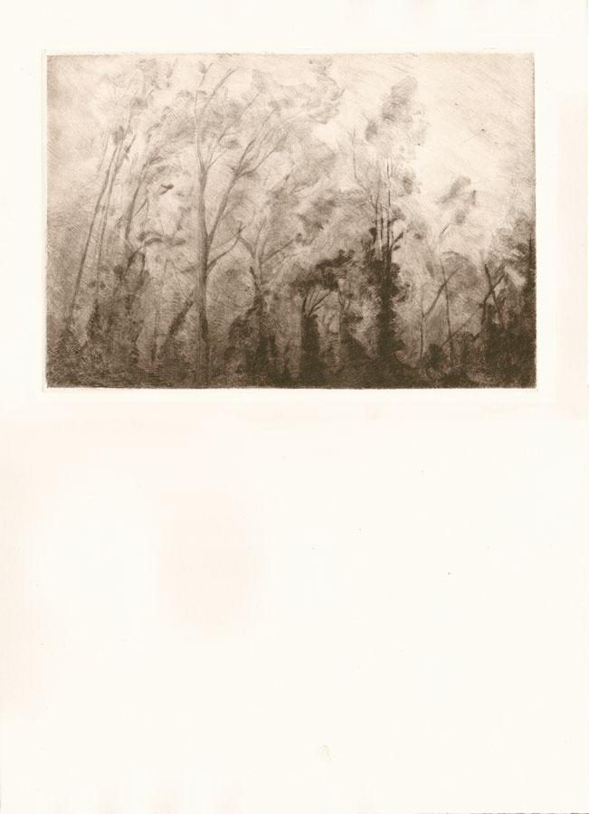 Alessandro Piangiamore | Tutto il vento che c'è (Marine) 2010-2014, etching, cm 31×40 . Edition of 3 + 2 AP