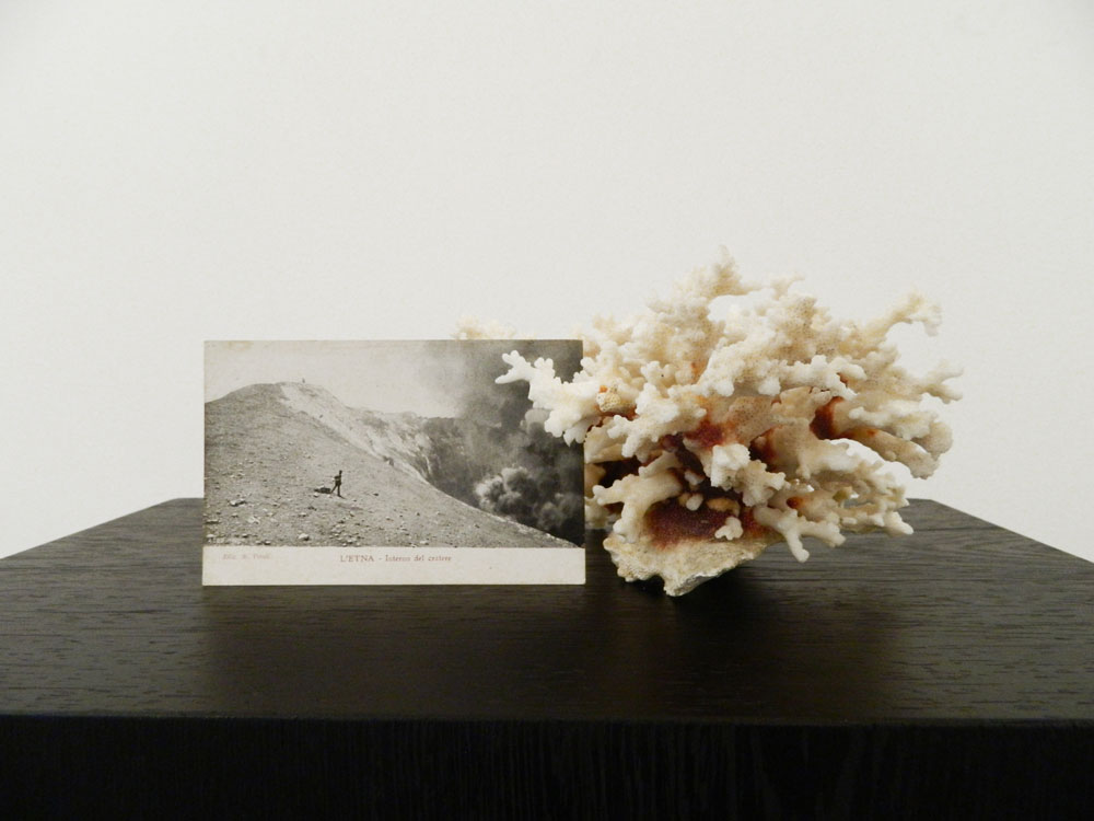 Alessandro Piangiamore | Untitled (volcano), 2012, coral, postcard, wood pedestal, cm 30 x 30 x 100