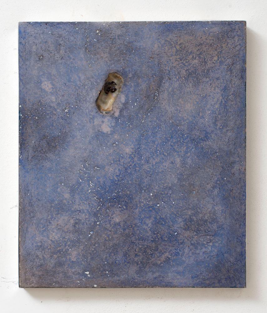 Untitled (daily)#2 , 2013 Concrete, sea shell, mother of pearl powder, blue shoe polish, wax, cm 30 x 46 x 3