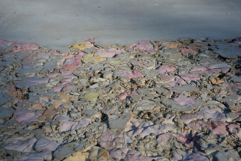 Un petalo viola su un pavimento di cemento, 2015 Concrete, pigments, metal (detail) Photo: Giovanni De Angelis
